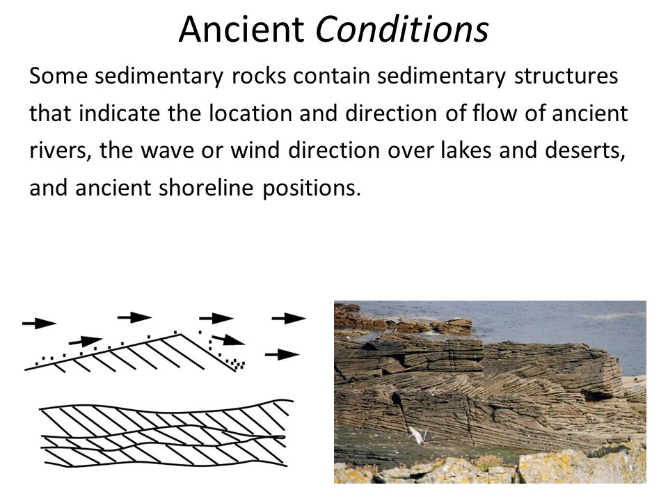 Ancient Conditions Some sedimentary rocks contain sedimentary structures that indicate the location and direction of flow of ancient rivers, the wave or wind direction over lakes and deserts, and ancient shoreline positions.