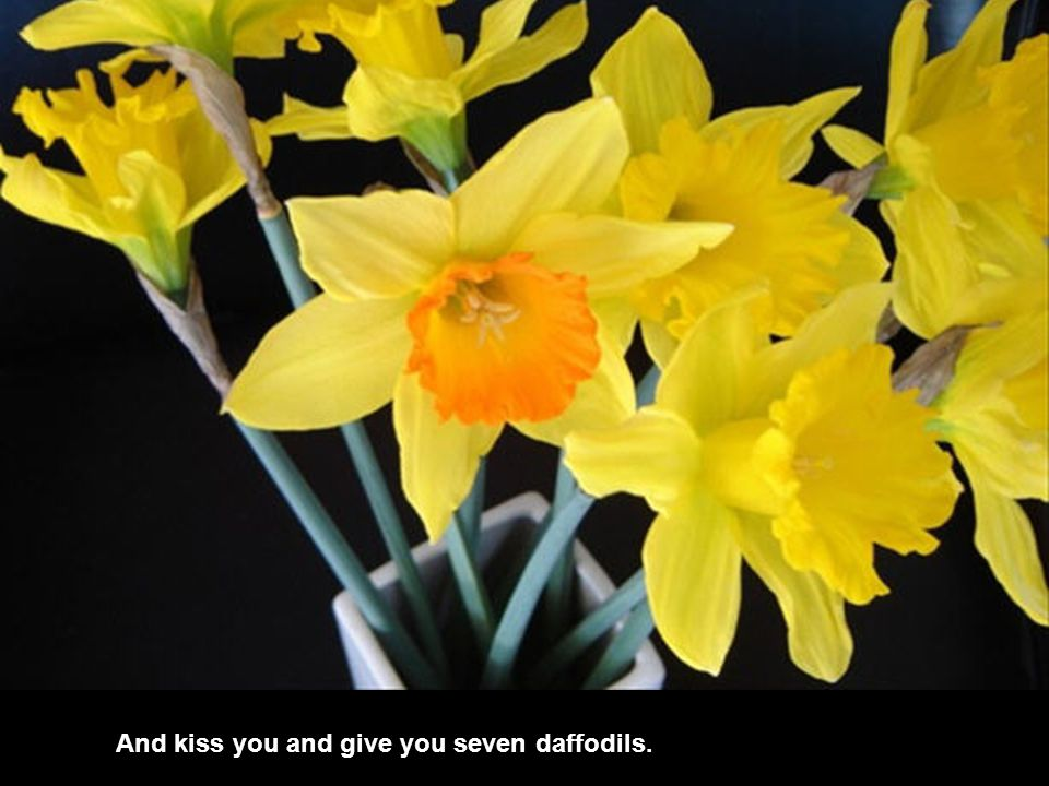 And kiss you and give you seven daffodils.