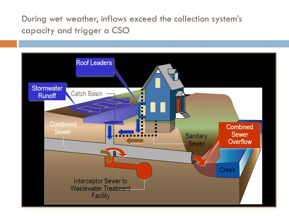 During wet weather, inflows exceed the collection system's capacity and trigger a CSO Combined Sewer Interceptor Sewer to Wastewater Treatment Facility Sanitary Sewer Creek Catch Basin Combined Sewer Overflow Stormwater Runoff Roof Leaders