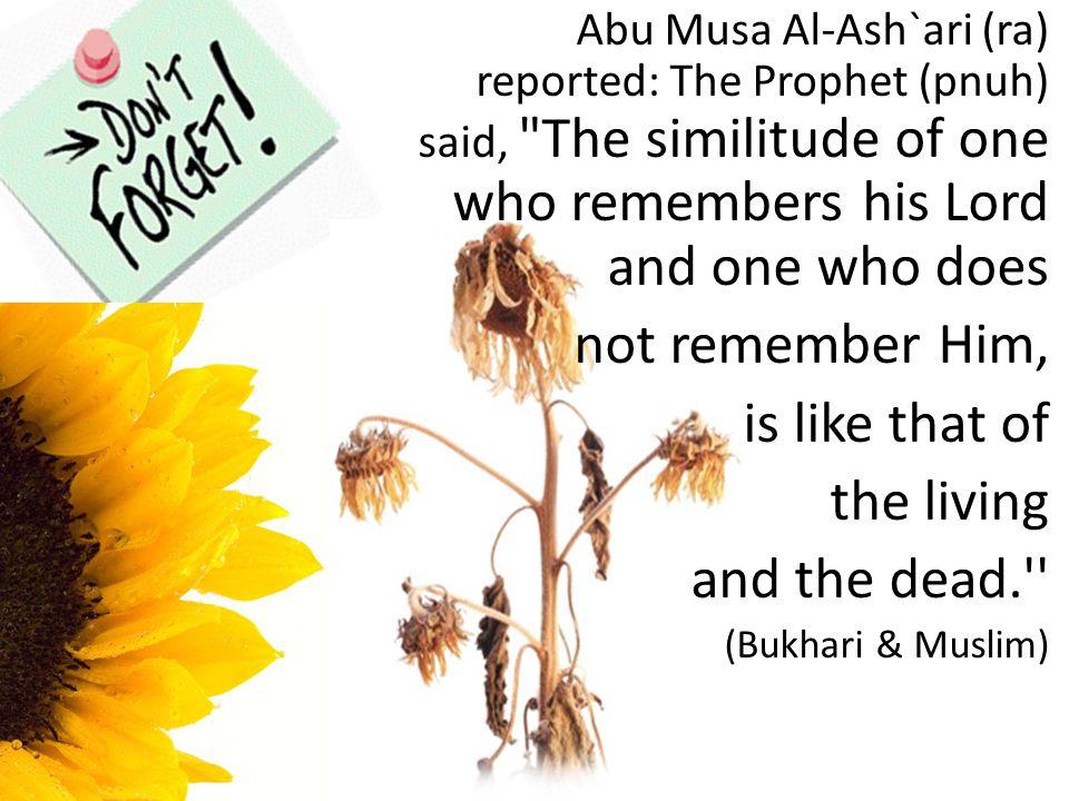 Abu Musa Al-Ash`ari (ra) reported: The Prophet (pnuh) said,