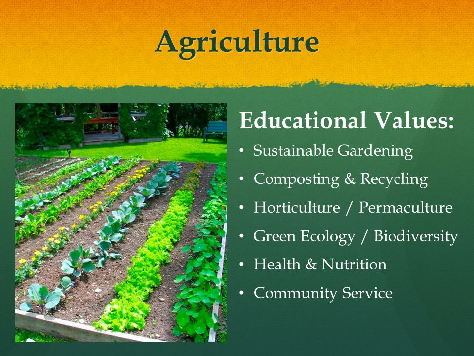 Agriculture Educational Values: Sustainable Gardening Composting & Recycling Horticulture / Permaculture Green Ecology / Biodiversity Health & Nutrition Community Service