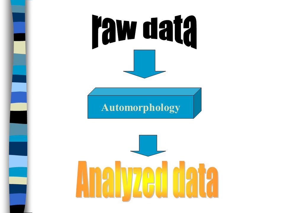 Automorphology