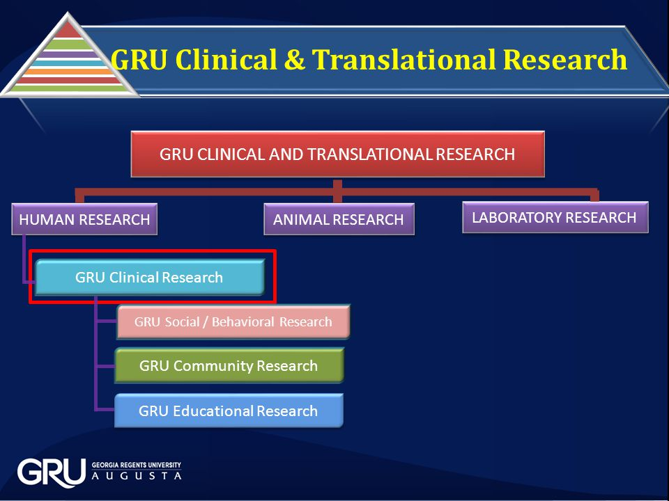 GRU CLINICAL AND TRANSLATIONAL RESEARCH LABORATORY RESEARCH ANIMAL RESEARCH HUMAN RESEARCH GRU Clinical Research GRU Social / Behavioral Research GRU Community Research GRU Educational Research GRU Clinical & Translational Research