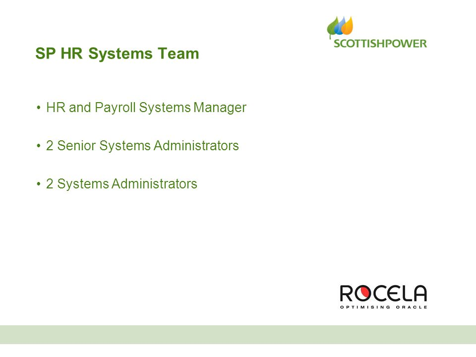 SP HR Systems Team HR and Payroll Systems Manager 2 Senior Systems Administrators 2 Systems Administrators