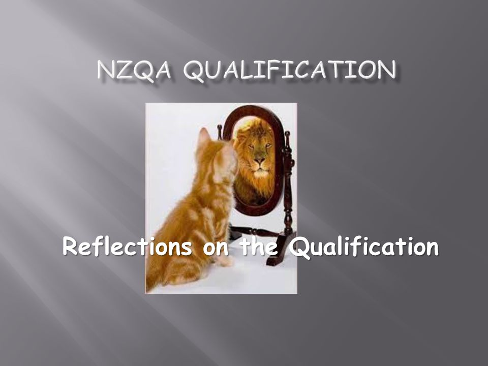 Reflections on the Qualification