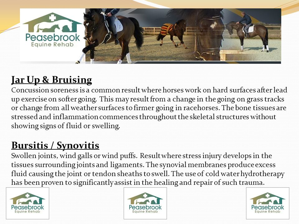 Jar Up & Bruising Concussion soreness is a common result where horses work on hard surfaces after lead up exercise on softer going. This may result fr