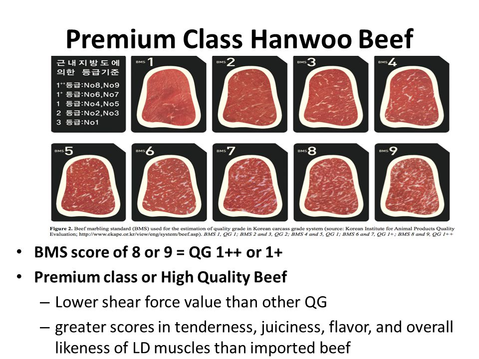 Premium Class Hanwoo Beef BMS score of 8 or 9 = QG 1++ or 1+ Premium class or High Quality Beef – Lower shear force value than other QG – greater scores in tenderness, juiciness, flavor, and overall likeness of LD muscles than imported beef