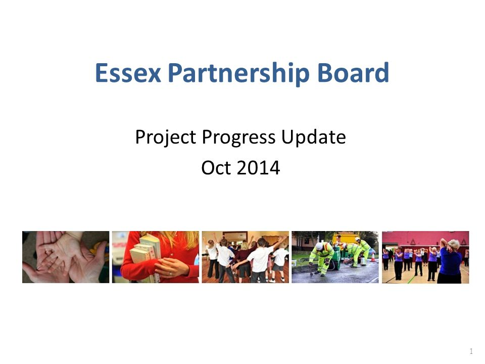 Essex Partnership Board Project Progress Update Oct 2014 1