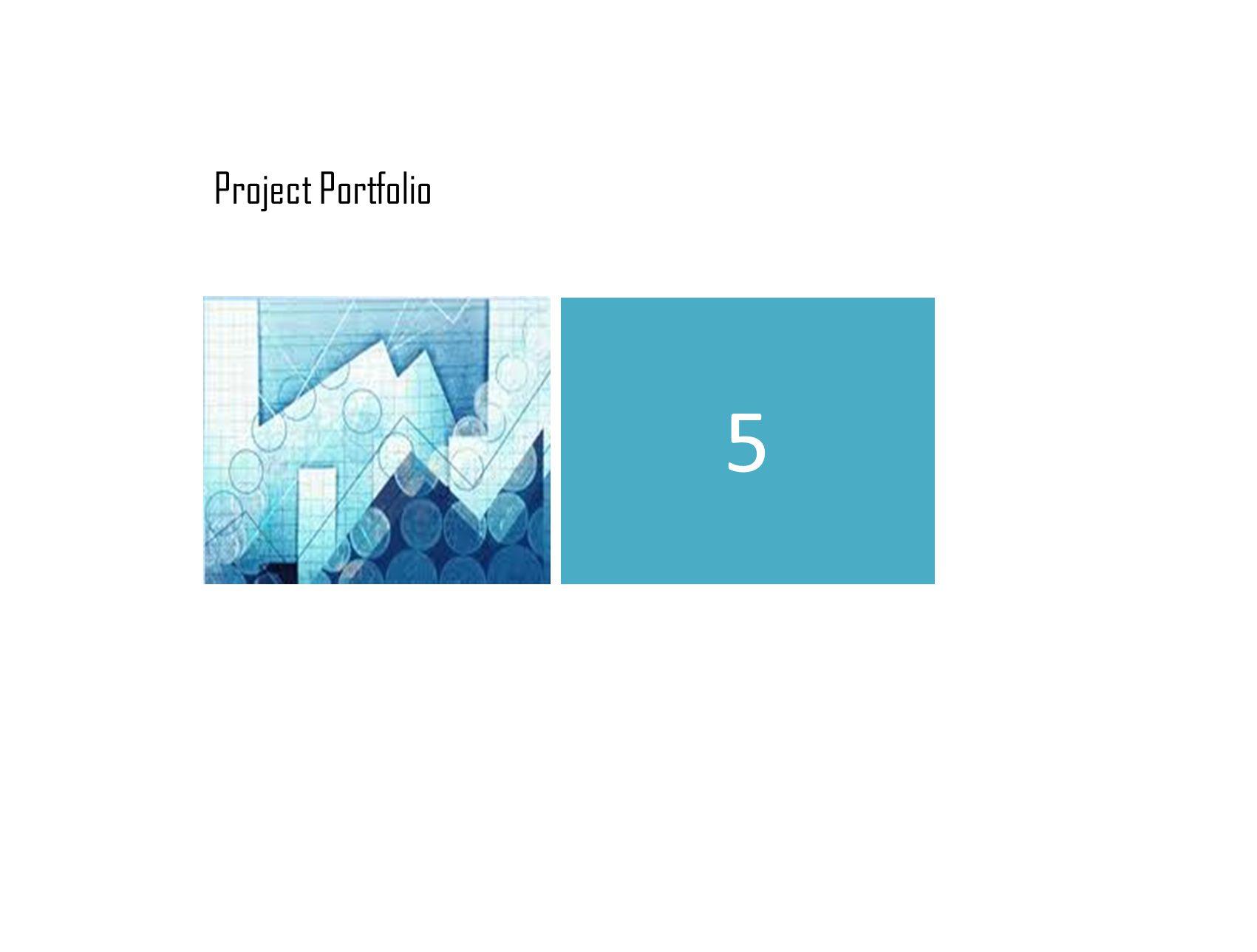 Project Portfolio 5
