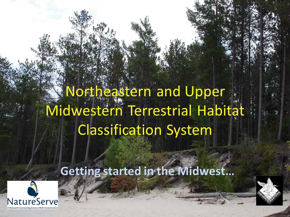 Structural Information in MW Review and update vegetation structural data layer produced through the inter-agency LandFire effort, aiming to depict desired vegetation structural classes for wildlife habitat characterization.