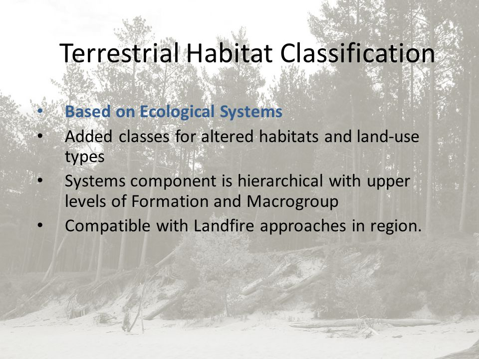 ECOLOGICAL SYSTEMS OF THE UNITED STATES A WORKING CLASSIFICATION OF U.S.