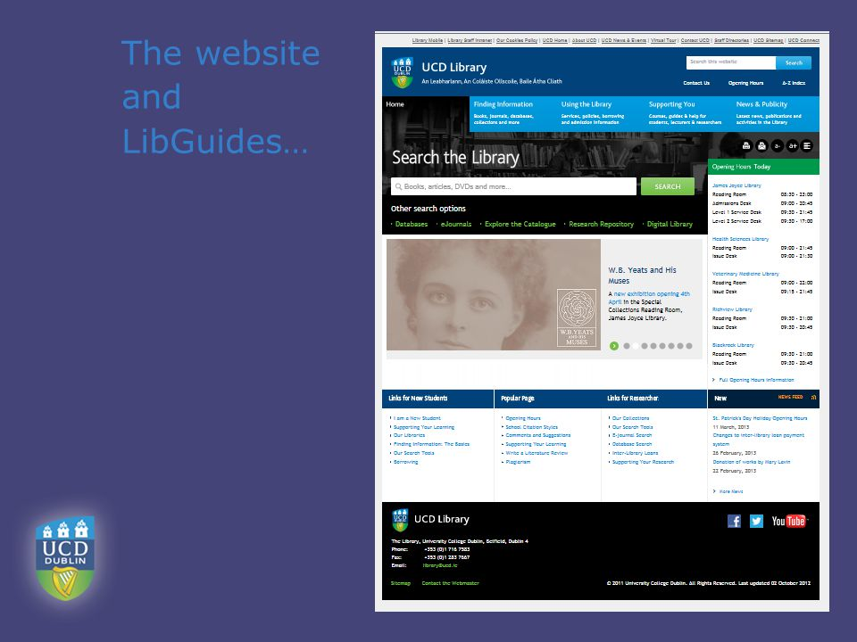The website and LibGuides…