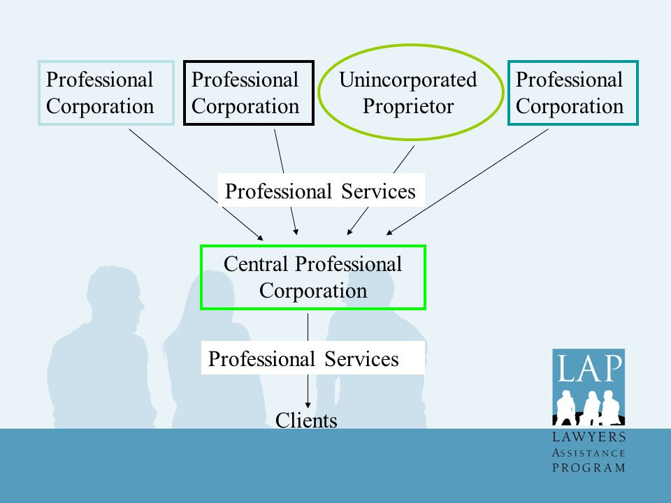 Professional Corporation Unincorporated Proprietor Central Professional Corporation Professional Services Clients