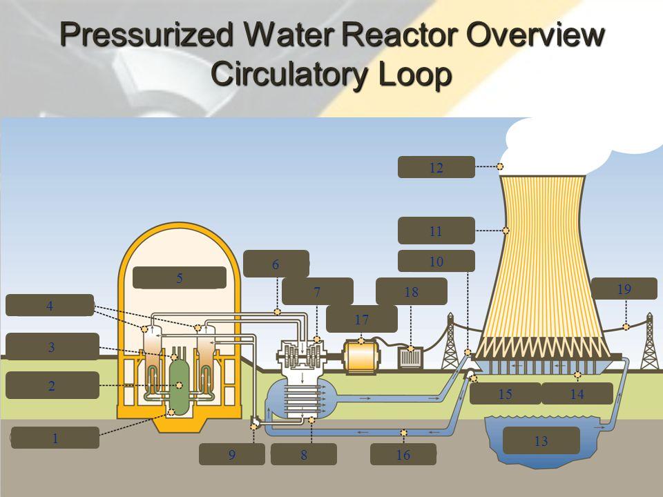 3 4 2 1 9 5 6 7 17 18 816 13 1514 10 11 12 19 Pressurized Water Reactor Overview Circulatory Loop