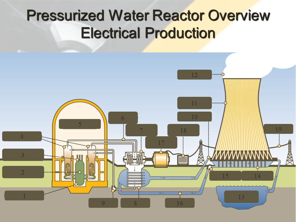 74 3 4 2 1 9 5 6 7 17 18 816 13 1514 10 11 12 19 Pressurized Water Reactor Overview Electrical Production