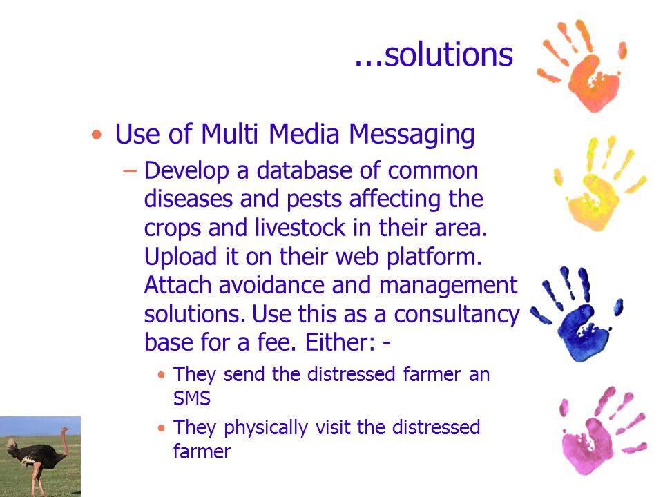 ...solutions Use of Multi Media Messaging –Develop a database of common diseases and pests affecting the crops and livestock in their area.