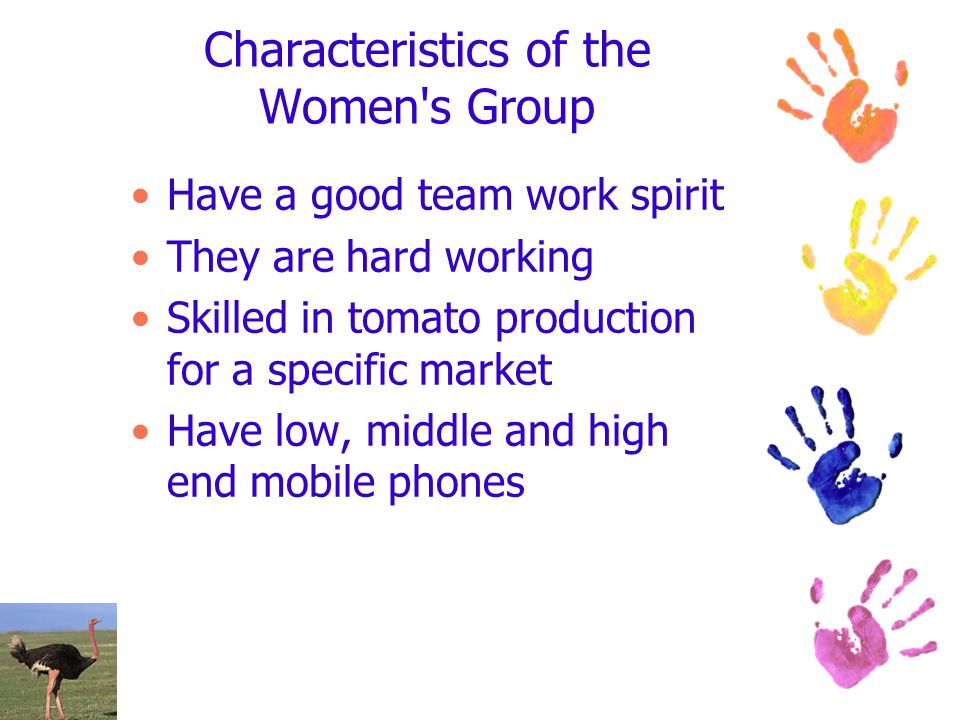 Characteristics of the Women s Group Have a good team work spirit They are hard working Skilled in tomato production for a specific market Have low, middle and high end mobile phones