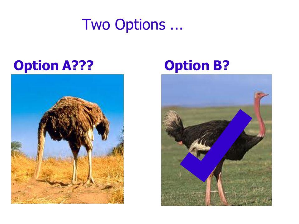 Two Options... Option A Option B