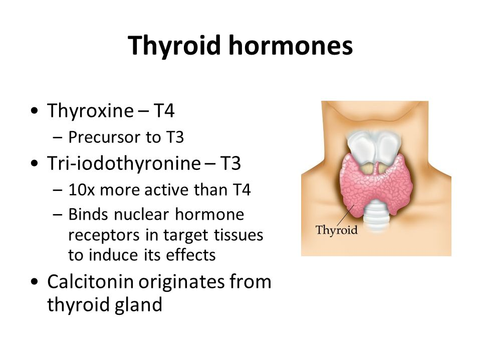 TRH test Used to differentiate between 2° and 3° hypothyroidism –Collect baseline sample –Administer thyrotropin releasing hormone (TRH) –Collect 30 and 60 min sample –Measure TSH Interpretation –Normal response: TSH rise to >5 mU/L at 30 min –Pituitary disease (2°): blunted response –Hypothalamic disease (3°): TSH rise but 60 min value exceeds 30 min Often performed with other DFTs to assess full pituitary function (ITT, GnRH test)