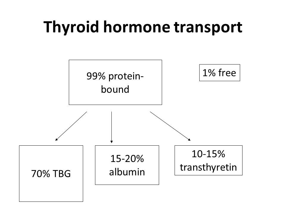 Free hormone assays T4 and T3 are small ∴ measured by competitive immunoassay In free hormone assays, labelled T4/T3 analogue must not disrupt equilibrium between bound and free hormone (i.e.