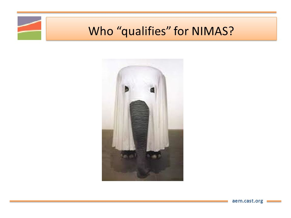 "aem.cast.org Who ""qualifies"" for NIMAS?"