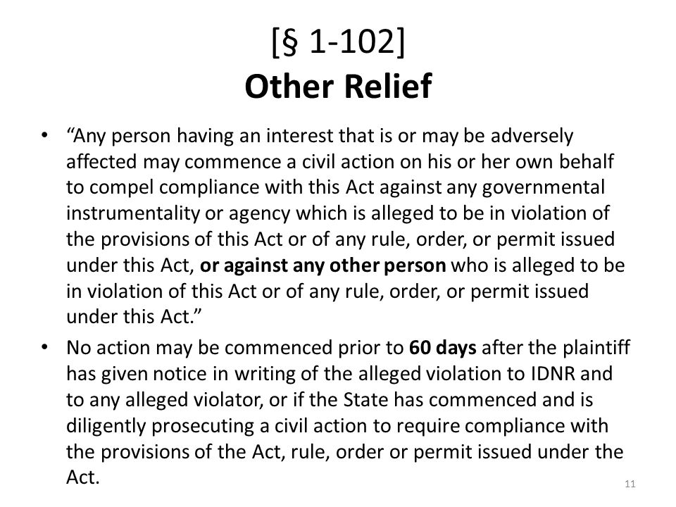[§ 1-102] Other Relief Any person having an interest that is or may be adversely affected may commence a civil action on his or her own behalf to compel compliance with this Act against any governmental instrumentality or agency which is alleged to be in violation of the provisions of this Act or of any rule, order, or permit issued under this Act, or against any other person who is alleged to be in violation of this Act or of any rule, order, or permit issued under this Act. No action may be commenced prior to 60 days after the plaintiff has given notice in writing of the alleged violation to IDNR and to any alleged violator, or if the State has commenced and is diligently prosecuting a civil action to require compliance with the provisions of the Act, rule, order or permit issued under the Act.