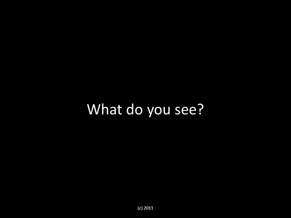 (c) 2011 What do you see