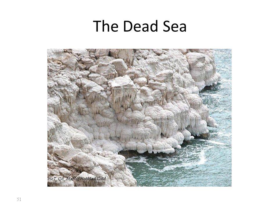 The Dead Sea 51