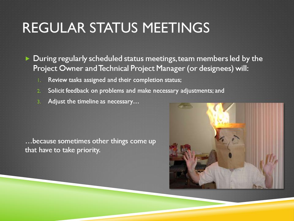 REGULAR STATUS MEETINGS  During regularly scheduled status meetings, team members led by the Project Owner and Technical Project Manager (or designees) will: 1.
