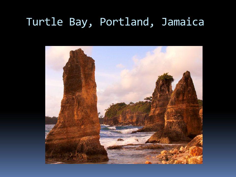 Turtle Bay, Portland, Jamaica