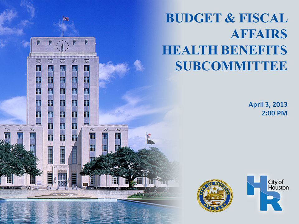 BUDGET & FISCAL AFFAIRS HEALTH BENEFITS SUBCOMMITTEE April 3, 2013 2:00 PM