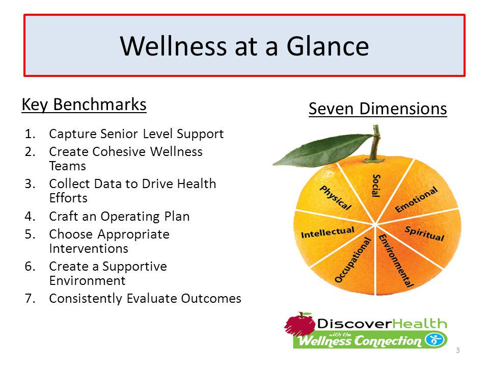 Wellness at a Glance Key Benchmarks 1.Capture Senior Level Support 2.Create Cohesive Wellness Teams 3.Collect Data to Drive Health Efforts 4.Craft an