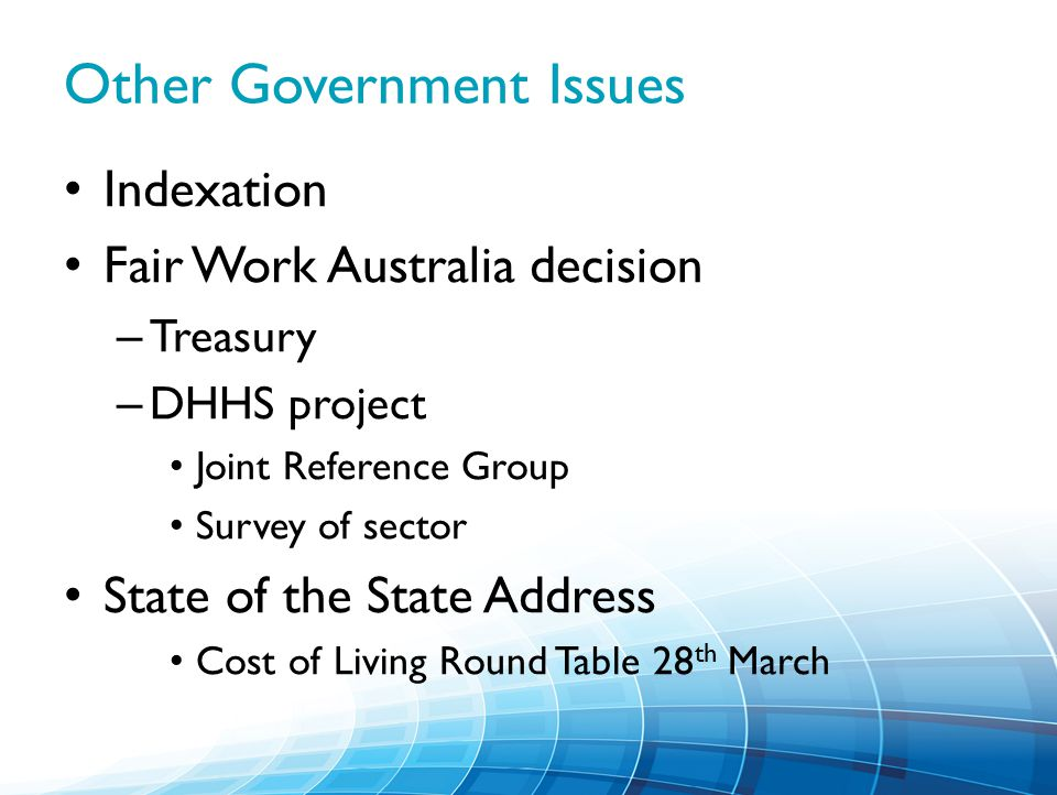 Other Government Issues Indexation Fair Work Australia decision – Treasury – DHHS project Joint Reference Group Survey of sector State of the State Address Cost of Living Round Table 28 th March
