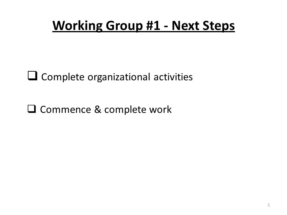 Working Group #1 - Next Steps  Complete organizational activities  Commence & complete work 5