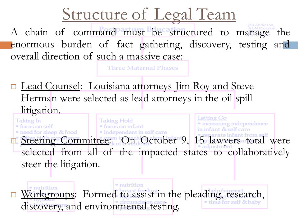 Structure of Legal Team A chain of command must be structured to manage the enormous burden of fact gathering, discovery, testing and overall direction of such a massive case:  Lead Counsel: Louisiana attorneys Jim Roy and Steve Herman were selected as lead attorneys in the oil spill litigation.