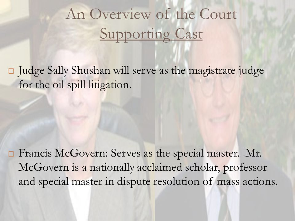 Structure of Legal Team A chain of command must be structured to manage the enormous burden of fact gathering, discovery, testing and overall direction of such a massive case:  Lead Counsel: Louisiana attorneys Jim Roy and Steve Herman were selected as lead attorneys in the oil spill litigation.