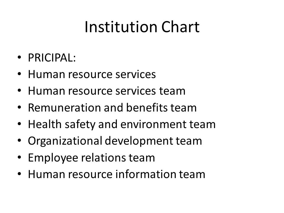 Institution Chart PRICIPAL: Human resource services Human resource services team Remuneration and benefits team Health safety and environment team Organizational development team Employee relations team Human resource information team