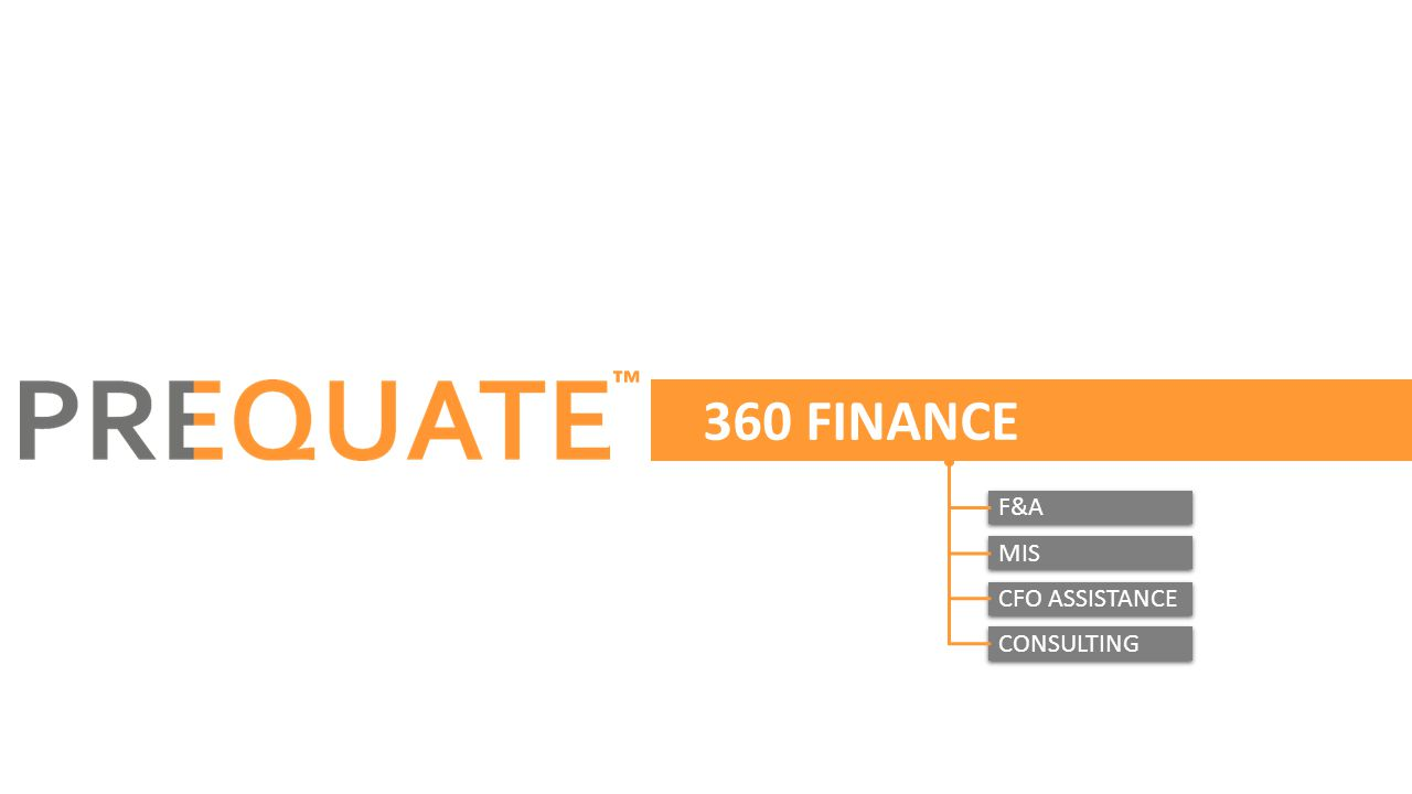 360 FINANCE ™ F&A MIS CFO ASSISTANCE CONSULTING