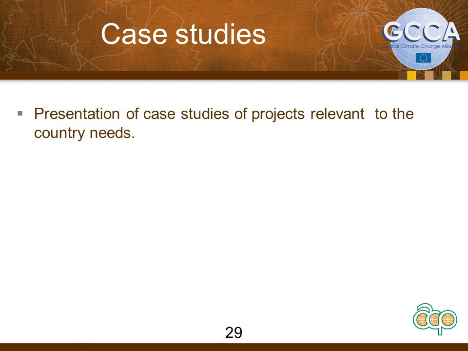 Case studies  Presentation of case studies of projects relevant to the country needs. 29