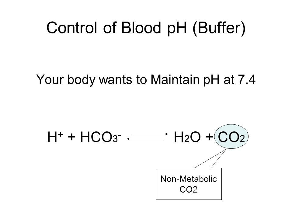 Control of Blood pH (Buffer) Chemical Buffer ↑ H + + HCO 3 - H 2 O + CO 2