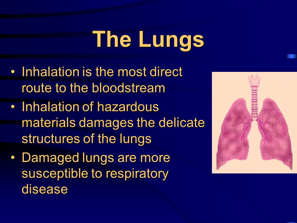 Respiratory Hazards Respiratory protection is required when employees are in areas where effective engineering controls are not feasible to protect the health of the employee from :Respiratory protection is required when employees are in areas where effective engineering controls are not feasible to protect the health of the employee from : –lack of oxygen –harmful dusts, fogs, fumes, mists, gases, smokes, sprays or vapors Respiratory Protection must comply with NIOSH/MSHARespiratory Protection must comply with NIOSH/MSHA