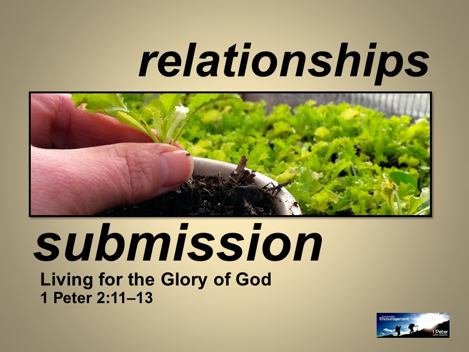 relationships Living for the Glory of God 1 Peter 2:11–13