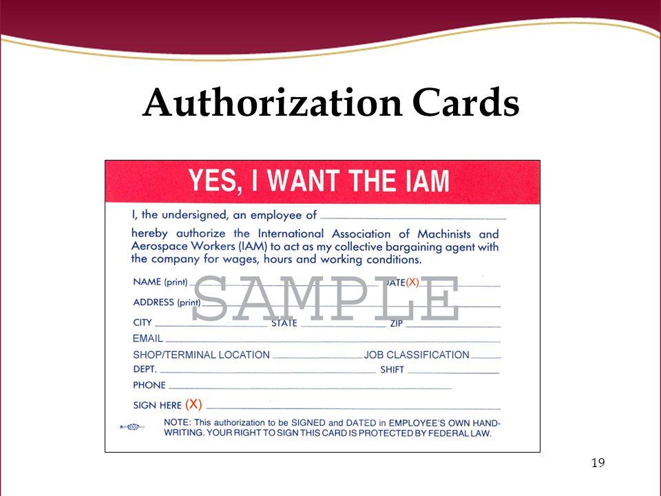 19 Authorization Cards