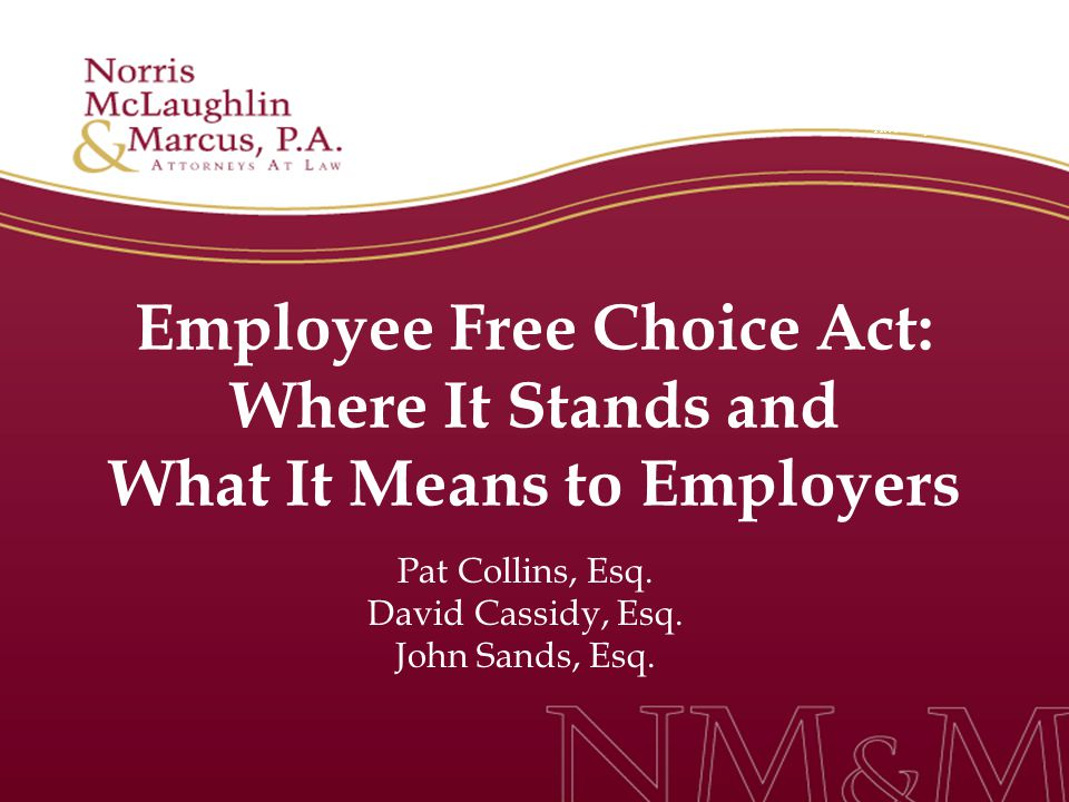Employee Free Choice Act: Where It Stands and What It Means to Employers Pat Collins, Esq.