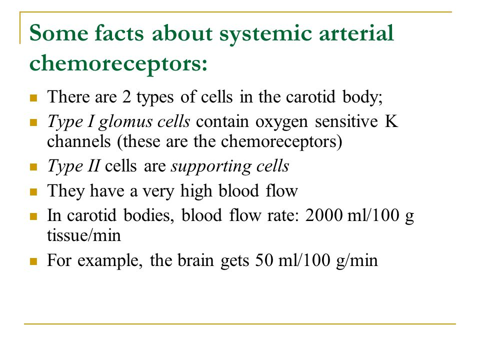 Some facts about systemic arterial chemoreceptors: There are 2 types of cells in the carotid body; Type I glomus cells contain oxygen sensitive K chan