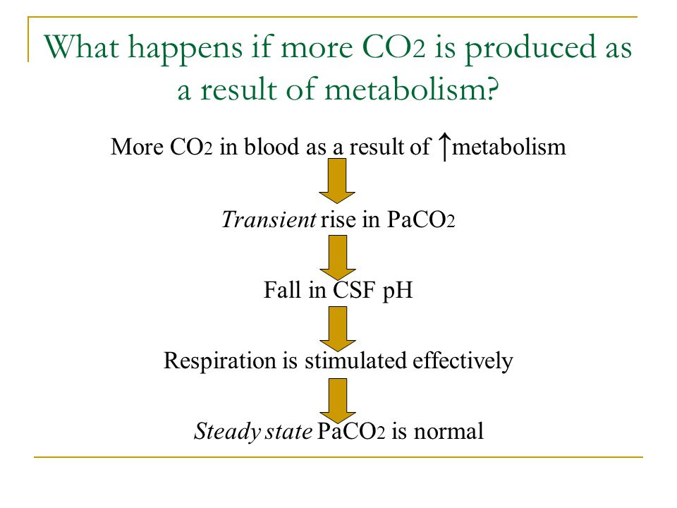 What happens if more CO 2 is produced as a result of metabolism? More CO 2 in blood as a result of ↑ metabolism Transient rise in PaCO 2 Fall in CSF p