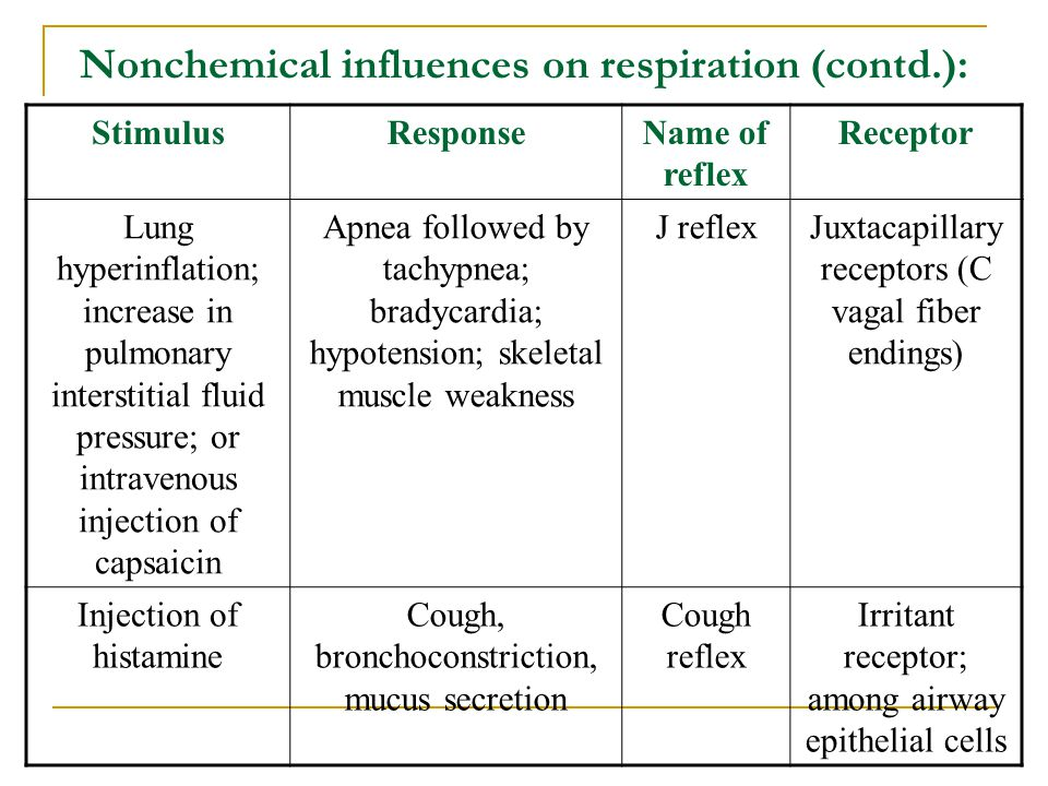 Nonchemical influences on respiration (contd.): StimulusResponseName of reflex Receptor Lung hyperinflation; increase in pulmonary interstitial fluid