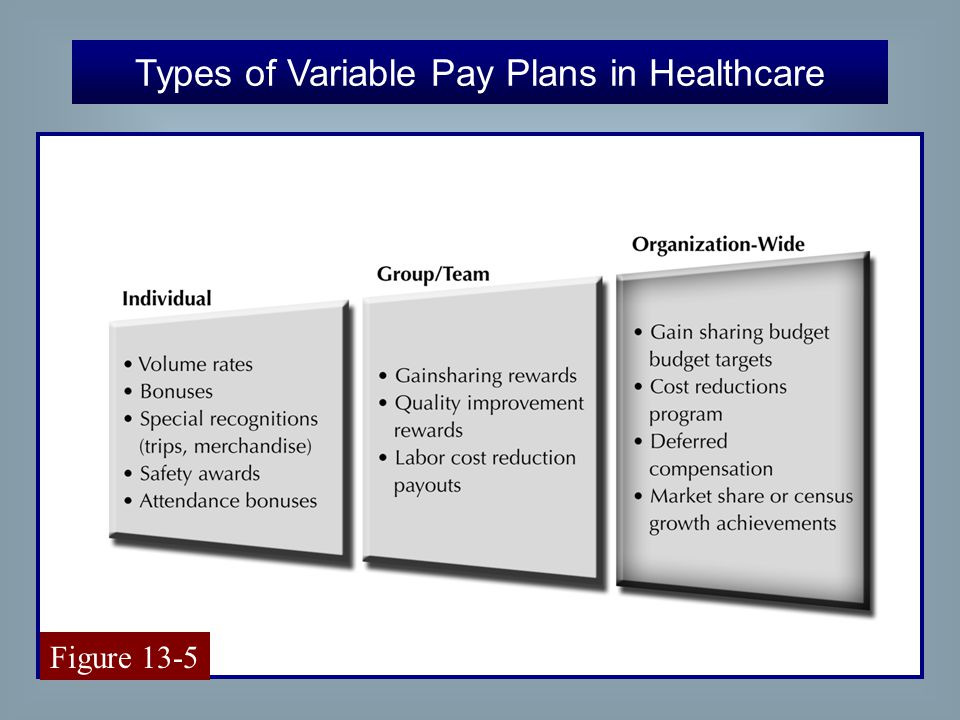 28 Types of Variable Pay Plans in Healthcare Figure 13-5