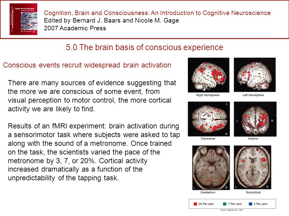 Cognition, Brain and Consciousness: An Introduction to Cognitive Neuroscience Edited by Bernard J.