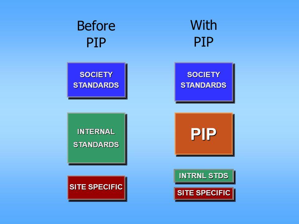 With PIP INTRNL STDS SOCIETYSTANDARDS INTERNALSTANDARDSINTERNALSTANDARDS PIP SITE SPECIFIC Before PIP SOCIETYSTANDARDS